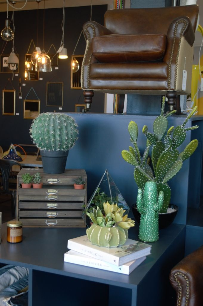 Cactus vases. LOVE! See what else I found at Rose & Grey's Manchester showroom.