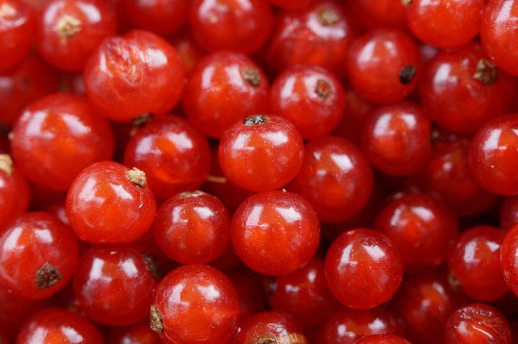 keto-gen.de | Startseite | Keto-Food-Fotografie: Beeren...