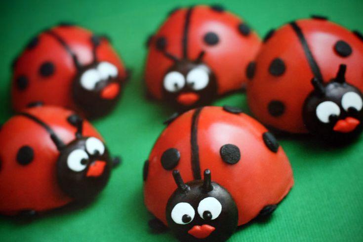 Ladybug Cake pop Ideas | Well, lieveheersbeestjes are my lovely little ladybugs. Or maybe it ...