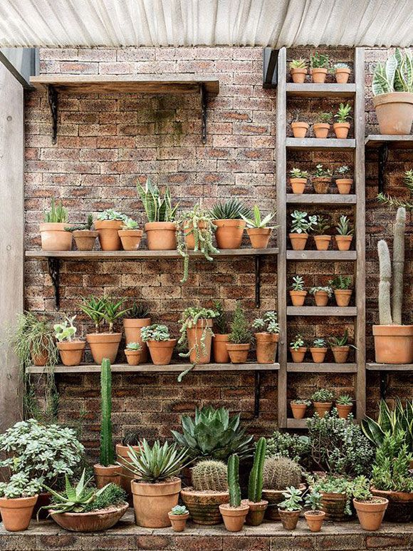 Cactussen zijn leuk! - My Simply Special