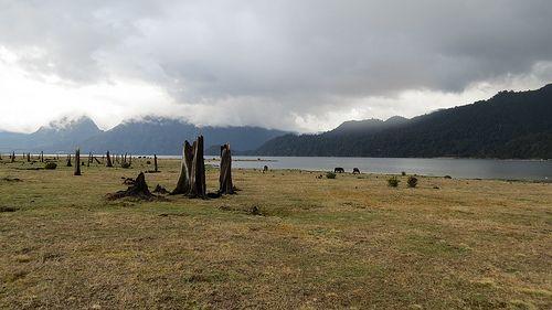 Lago Chapo