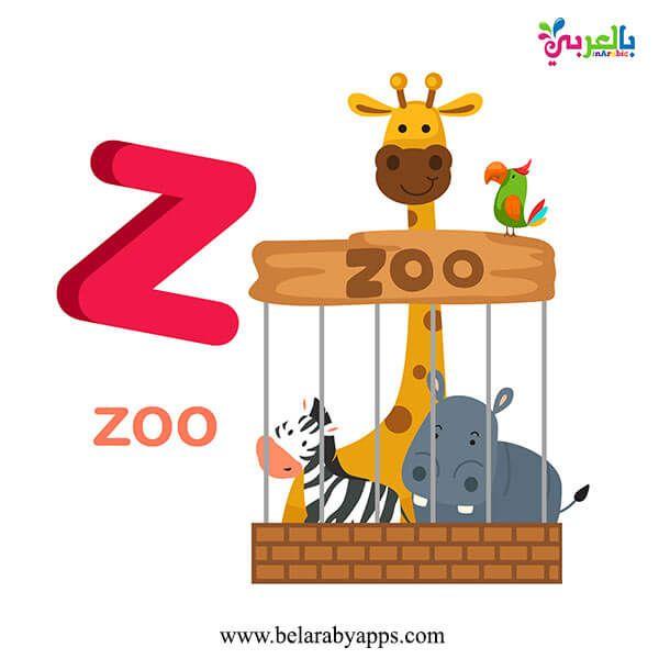 بطاقات تعليم الحروف الانجليزية للاطفال Pdf للطباعة Abc Flash Cards بالعربي نتعلم Lettering Alphabet Letter Z Lettering