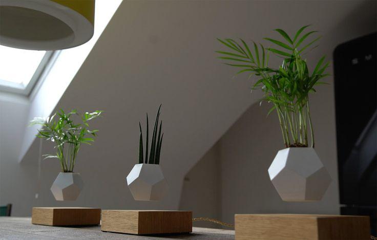Grâce à un ingénieux système qui fonctionne avec des aimants, les plantes semblent littéralement défier les lois de la gravité. Le projet est actuellement soumis à la plateforme de crowdfunding Kickstarter. À l'heure où nous écrivons ces lignes, LYFE a dépassé son objectif, et devrait donc voir le jour d'ici peu. Pour en savoir plus sur ce sublime projet, rendez-vous sur la page Kickstarter de LYFE.