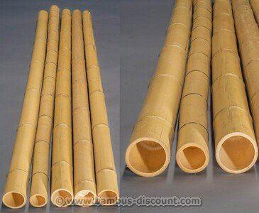 1000+ ideas about Bambus Kaufen on Pinterest | Bio kräuter ...