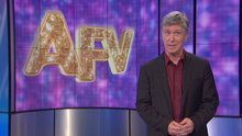 America's Funniest Home Videos - The Barking Lot, Mission Im-Paw-Sible and Hammocks Versus Hams