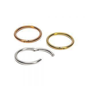 Seamless Hinged Segment Titanium Piercing Ring - 16ga