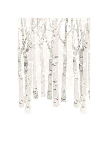 Birch Woods in Winter Art Prints