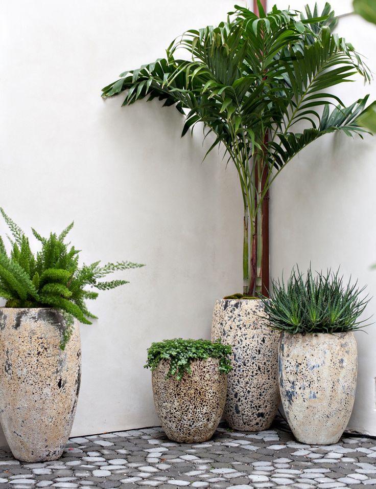 Personalized landscape design | | Vine Garden Market