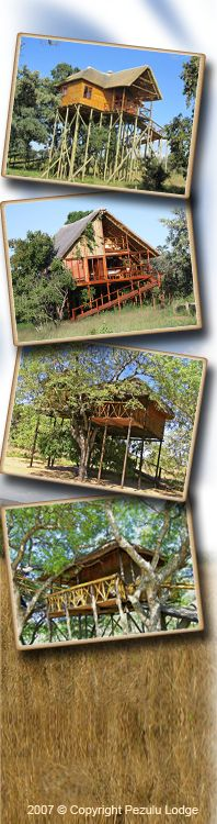 Tree House Holiday in a Safari Lodge near Kruger