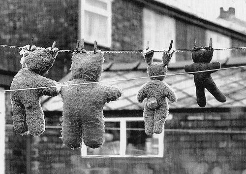 Teddy bears on washing line//