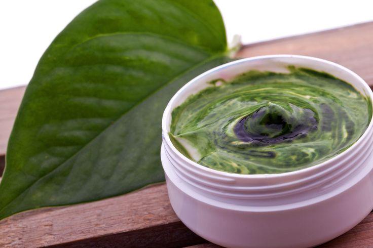 Visszerekre csalánkrém 100 ml olivaolaj,méhviasz 20 dk,3-4 marék csalán