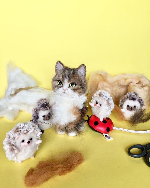 空ちゃん💛  @tomosuke0411 さん家の くーちゃんをちびっこくーちゃんに に誕生途チュ〜♪ くーちゃんはお顔もボディ〜も まーるくてふわふわ💛 ポチャっとしたくーちゃんの可愛い雰囲気を 出せるように 少し長めの毛にしていく予定💛  #cat #エキゾチックショートヘア #猫 #ねこ #handmade #doll  #exoticshorthair  #愛猫#exoticshorthaircat #catstagram #catlover #craft #happy #instacat #neko #人形 #art