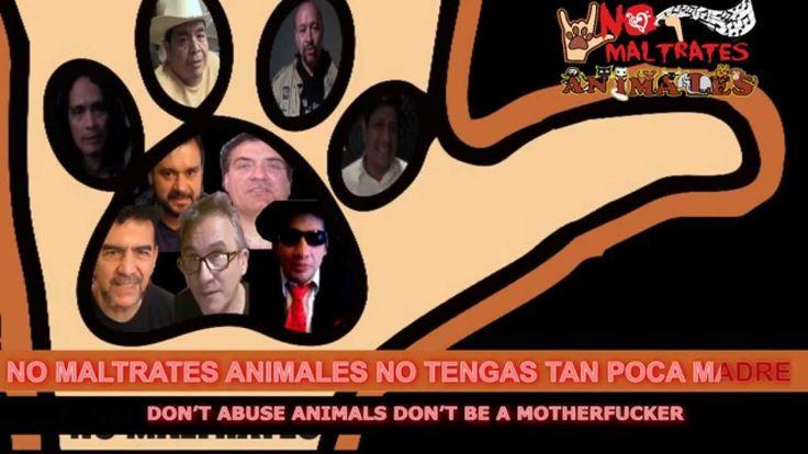 Canción No Maltrates Animales