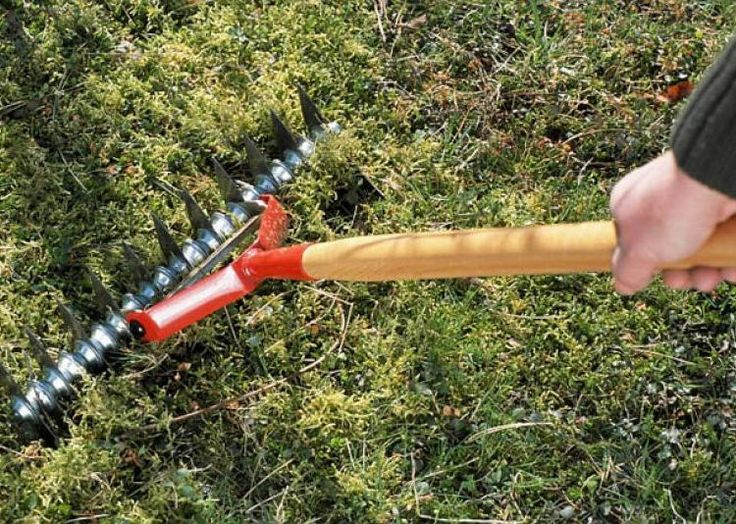 Les 25 meilleures id es de la cat gorie scarificateur sur for Entretien de la pelouse