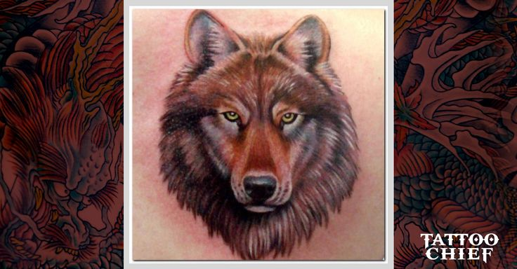 Check out Discrete wolf tattoo (2) or other wolf body tattoo designs that will blow your mind, tattoo ideas that will be your next inspiration.