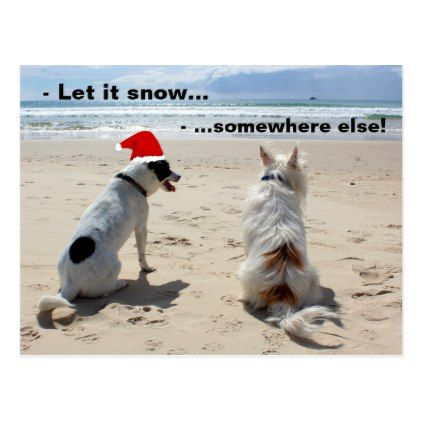 Christmas beach funny dogs postcard - postcard post card postcards unique diy cyo customize personalize