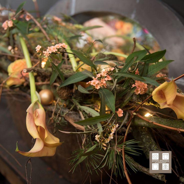 Onze Kerstwens: http://bloemenuitaalten.nl/effen_wat_anders/nieuwjaar/