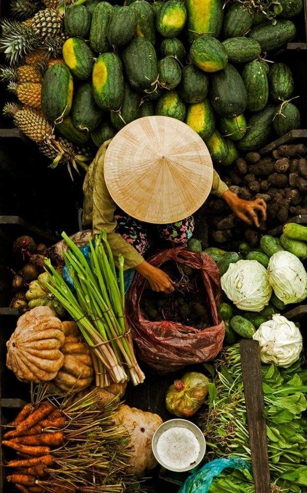 Amid the vegetables . Vietnam