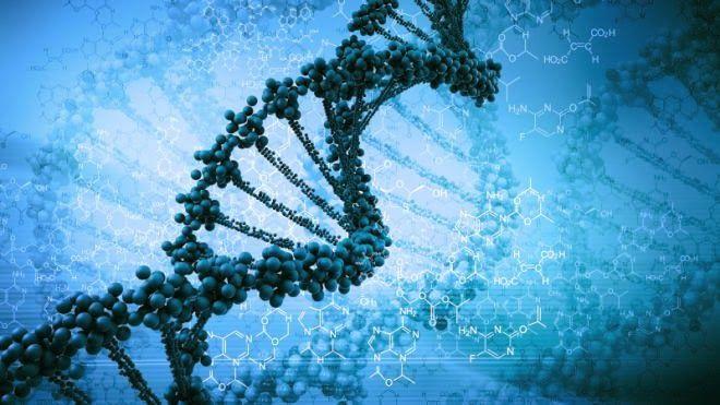 Cientistas finalmente mostram como seus pensamentos causam alterações moleculares específicas nos genes.
