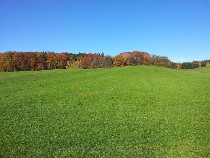 Fields of county Ebersberg in Upper Bavaria