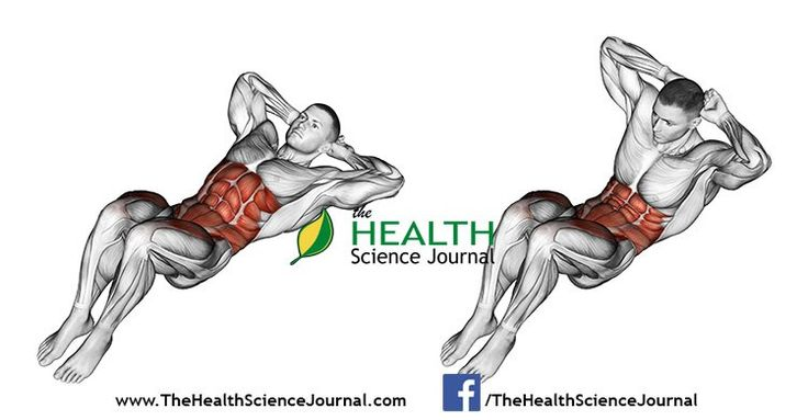 © Sasham   Dreamstime.com - Exercising for bodybuilding. Climbs the trunk