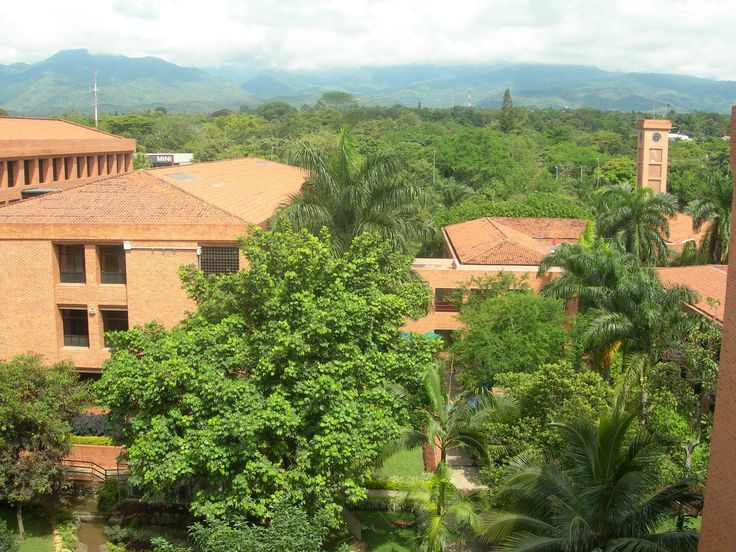 ISEP study abroad in Colombia Universidad Icesi