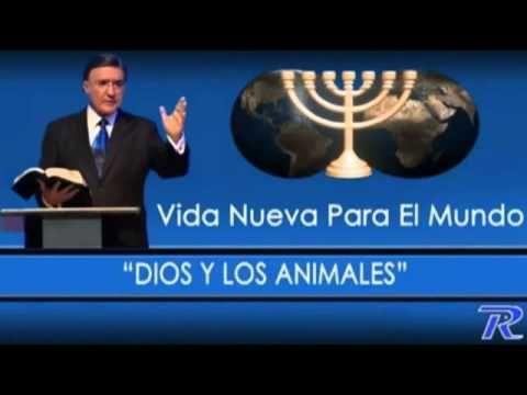 Teoría de Evolución Vs Biblia Armando Alducin - YouTube