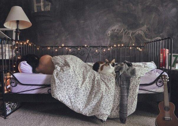 #дом#девушка#кошка#готара#одиночство#сон
