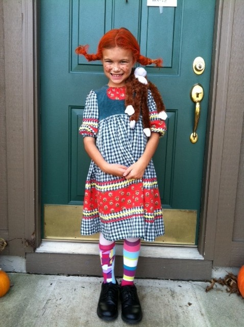 Fab Pippi Longstocking Costume