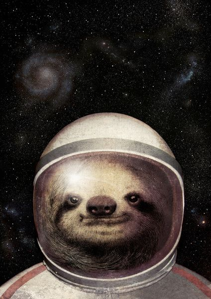 'space sloth' illustration by eric fan #art