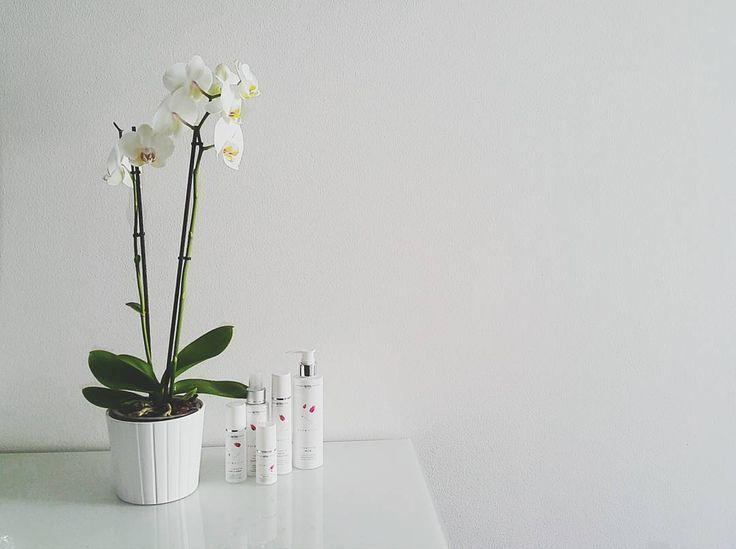 Saturday's perfection. #purewhitecosmetics #naturalbeauty #naturalskincare #naturalcosmetics