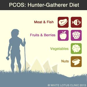 Hunter Gatherer Diets