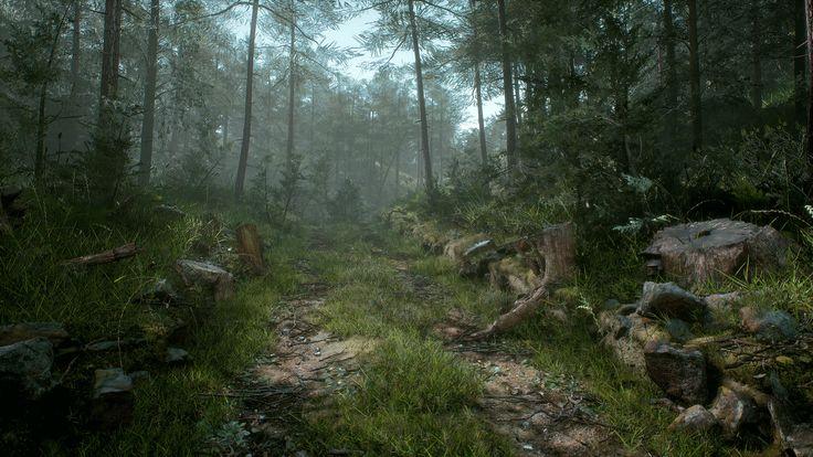 ArtStation - Megascans Forest Path, Wiktor Öhman