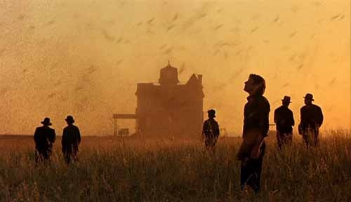 some of the best cinematography   /// Days of Heaven (dir. Terrence Malick, 1978).