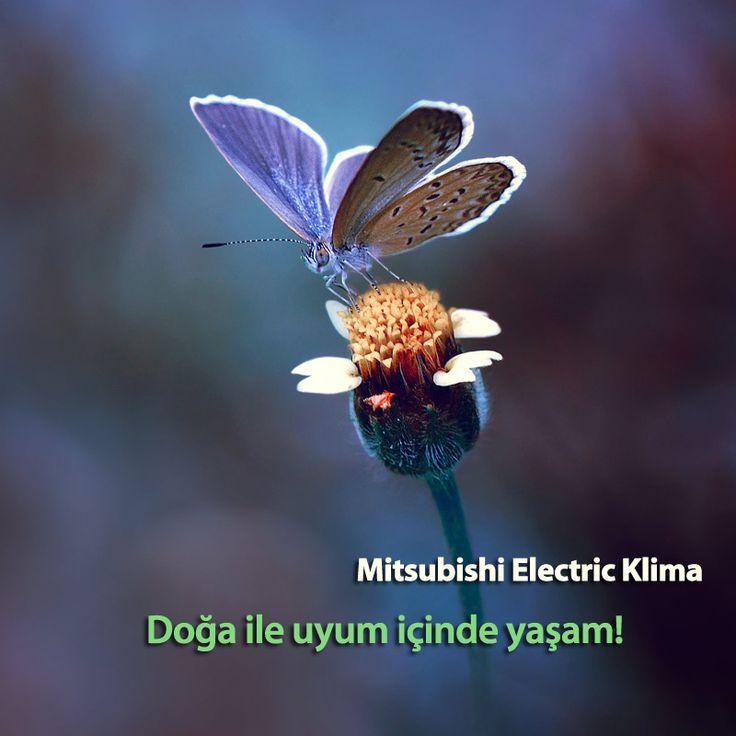 Mitsubishi Electric Klima doğaya duyarlı cihazları ile enerji tasarrufu sağlar. #MitsubishiElectricKlima www.klima.mitsubishielectric.com.tr #SezonsalVerimlilik #Klima #HVAC #AirConditioner #Enerji #EnerjiTasarrufu #Energy #Doğa #Nature #Blue #Mavi #Çiçek #Flower