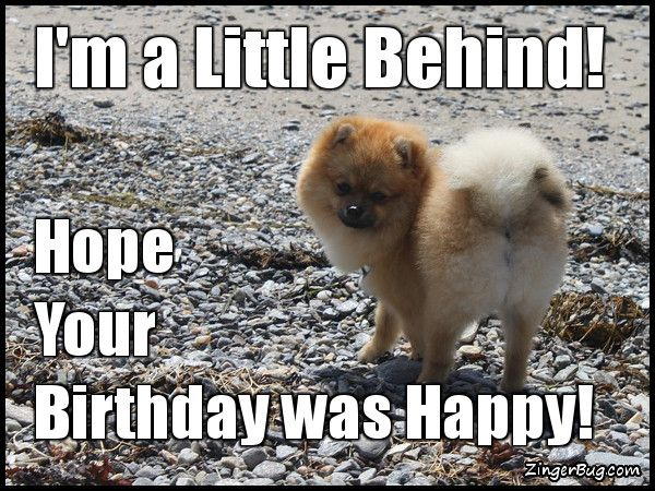 35 Best Happy Belated Birthday Memes | SayingImages.com | Funny happy birthday  meme, Happy belated birthday meme, Belated birthday meme