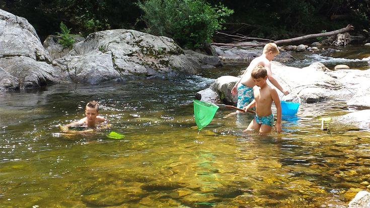 Camping l'Ardèchois: fijne Nederlandse familiecamping aan een riviertje | Frankrijk Puur