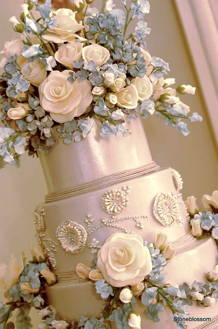 85 best sylvia weinstock cakes images on pinterest cake wedding you can have your cake and eat it too arubaitofo Image collections