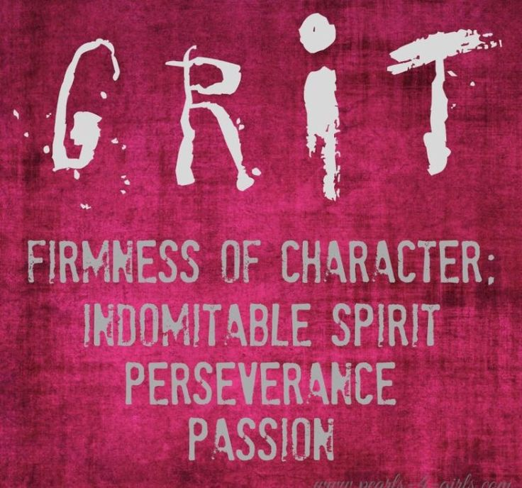 DEFINITION OF A FIT AND LOVING PARENT- GRIT FIRMNESS OF CHARACTER, INDOMITABLE SPIRIT PERSEVERANCE - PASSION.