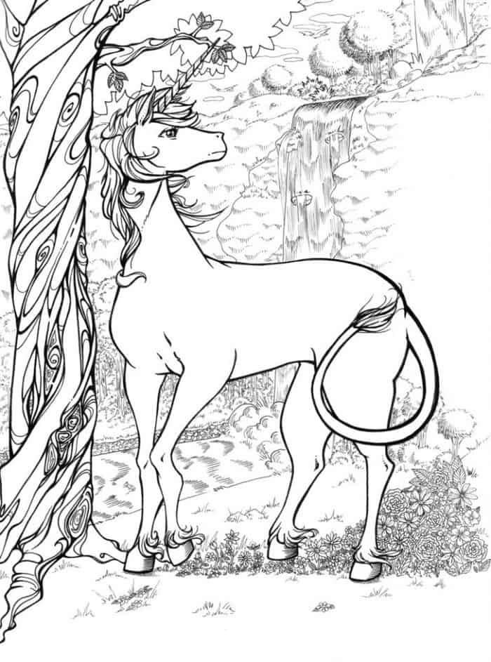 Wild Unicorn Coloring Page For Adults   Unicorn coloring ...