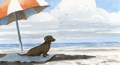 DACHSHUND At The BEACH Dog Watercolor Signed Fine by k9artgallery, $12.50