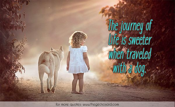 The journey of life is sweeter when traveled with a dog.  #animals #dog #journey #life #quotes #sweeter #traveled	  ©2016 The Gecko Said – Beautiful Quotes