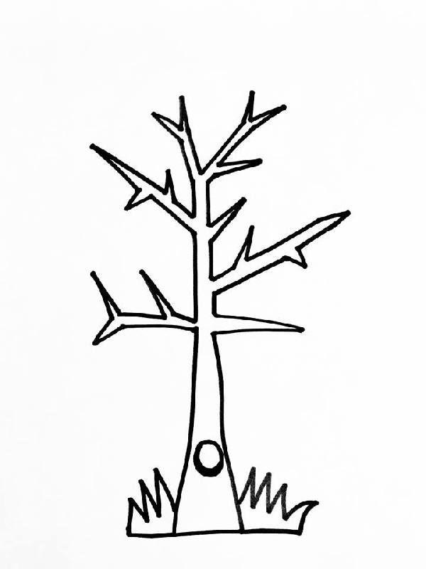 vaak kleurplaat boom zonder bladeren jnz98 pachoice