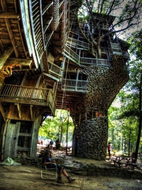 the coolest tree house ever:)