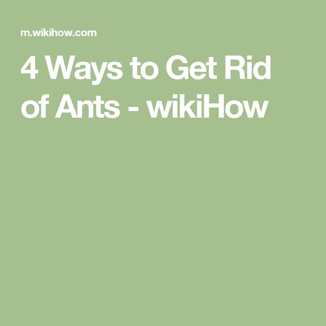 9 best mice other pests how to get rid of images on pinterest 4 ways to get rid of ants wikihow ccuart Images