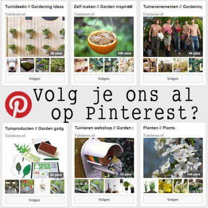 Tuinieren is te vinden op Pinterest.