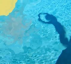 david hockney water paintings -