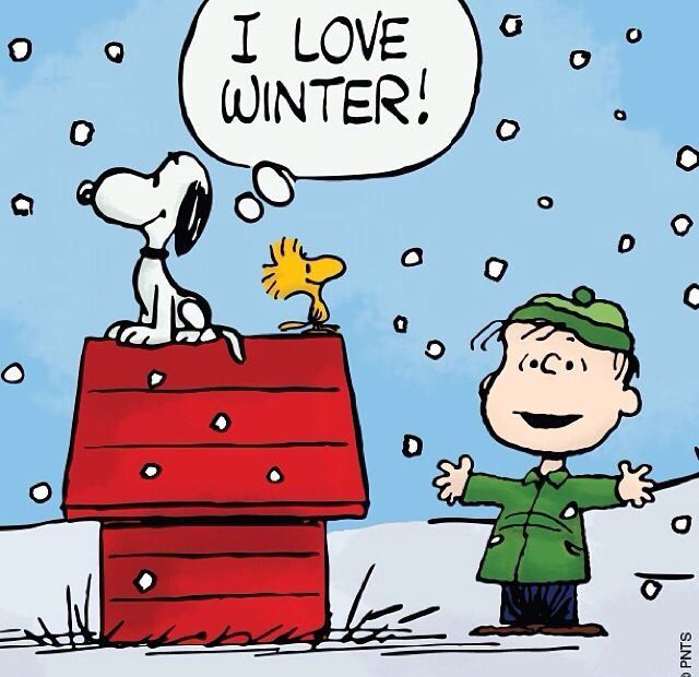 1033 best images about woodstock and snoopy on pinterest