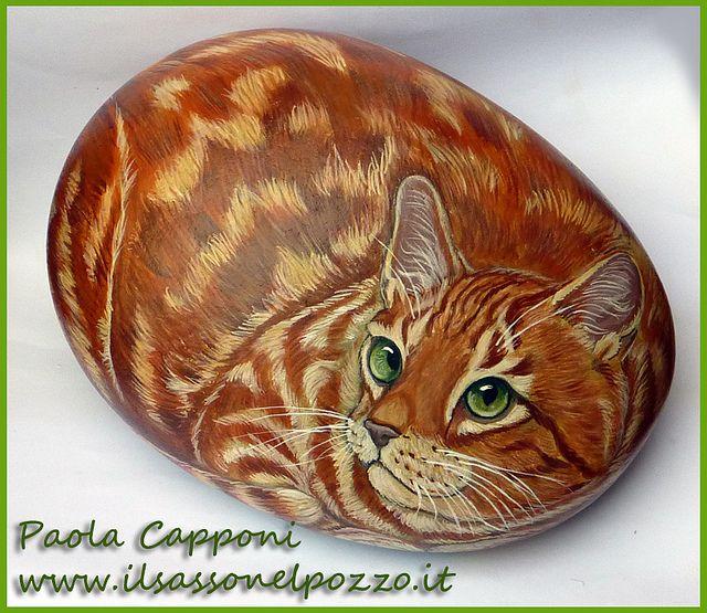 Gatto rosso by Il sasso nel Pozzo, via Flickr