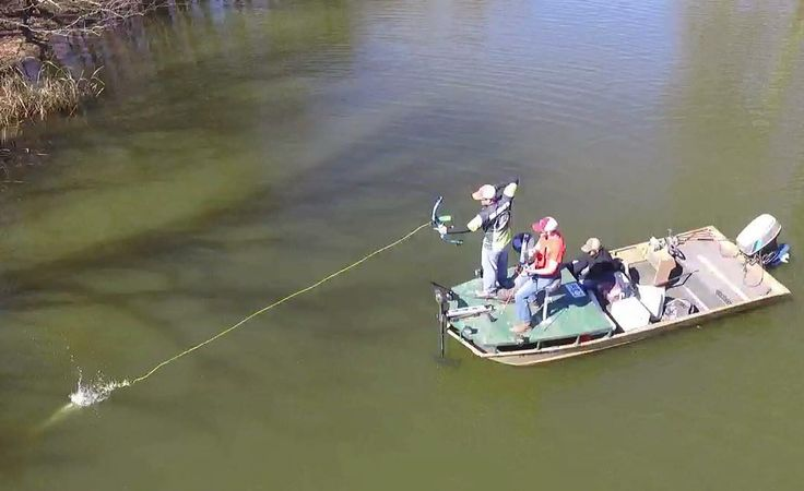 101 best bow fishing images on pinterest bowfishing bow for Best drone for fishing
